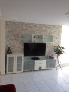 Wohnzimmer Renovation, 1 Wand Steinimitation- Tapete mit Einrichtung